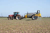 26-3-2021 Applying liquid nitrogen to Winter oilseed rape.<br /> ©Tim Scrivener Photographer 07850 303986<br />      ....Covering Agriculture In The UK....
