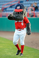 Brevard County Manatees mascot before a game against the Daytona Cubs at Spacecoast Stadium on April 5, 2013 in Viera, Florida.  Daytona defeated Brevard County 8-0.  (Mike Janes/Four Seam Images)