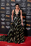 Lucia Jimenez attends to 33rd Goya Awards at Fibes - Conference and Exhibition  in Seville, Spain. February 02, 2019. (ALTERPHOTOS/A. Perez Meca)