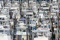 Boats docked in marina, Cape May, New Jersey, USA
