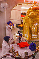 Asia,India,Punjab, Amristar, Golden temple,Palki Sahib where is the Sikh holy book, every night there is a ceremony to close the book