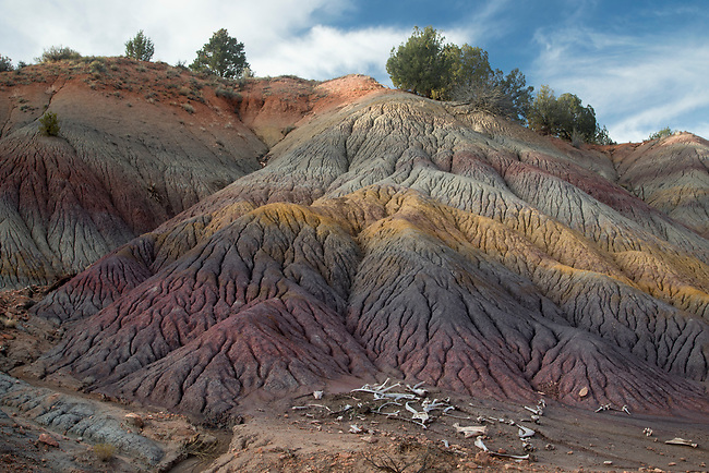 Clay beds at Coyote Buttes in Northern Arizona
