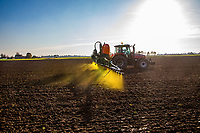 Applying residual herbicide to winter wheat - Lincolnshire, November