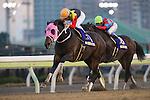SHINAGAWA,JAPAN-DECEMBER 29: Apollo Kentucky #11,ridden by Hiroyuki Uchida,wins the Tokyo Daishoten at Ohi Racecourse on December 29,2016 in Shinagawa,Tokyo,Japan (Photo by Kaz Ishida/Eclipse Sportswire/Getty Images)