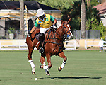 WELLINGTON, FL - NOVEMBER 25:  Guilherme Lins, Brazil, warms up for his match in the USPA International Cup at the Grand Champions Polo Club, on November 25, 2017 in Wellington, Florida. (Photo by Liz Lamont/Eclipse Sportswire/Getty Images)