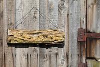 Wildbienen-Nisthilfe aus morschem Holz, Totholz. Ein morsches Holzstück wird an einer sonnigen Schuppenwand aufgehängt. Wildbienen-Nisthilfen, Wildbienen-Nisthilfe selbermachen, selber machen, Wildbienenhotel, Insektenhotel, Wildbienen-Hotel, Insekten-Hotel