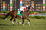 16 July 2011: Action Andy and Alfredo Clemente win the Kitten's Joy Stakes at Colonial Downs in New Kent, Va. Action Andy is owned by Robert Gerczak and trained by Stephanie B. Nixon (Susan M. Carter/Eclipse Sportswire)