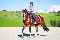 2018 NZ Horse & Pony Master Class Shoot with Kate Hewlett. Kerikeri, Northland. Thursday 29 March. Copyright Photo: Libby Law Photography