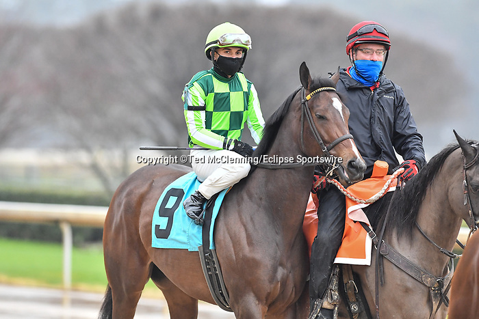 February 27, 2021:#9, Kimari in the post parade for the Spring Fever Stakes at Oaklawn Park in Hot Springs, Arkansas. Ted McClenning/Eclipse Sportswire/CSM