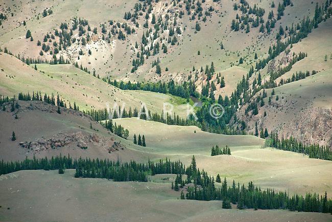 Colorado landscape, Hinsdale County