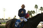 CYPRESS, CA  DECEMBER 3 Thumbs up from Mike Smith and Majestic Heat, as they head into the winners circle after winning the Bayakoa Stakes (Grade ll) on December 3, 2017, at Los Alamitos Race Course in Cypress, CA. (Photo by Casey Phillips/ Eclipse Sportswire/ Getty Images)