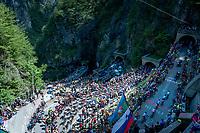 peloton led by Team Movistar up the Passo di San Boldo<br /> <br /> Stage 19: Treviso to San Martino di Castrozza (151km)<br /> 102nd Giro d'Italia 2019<br /> <br /> ©kramon