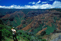 Looking out over Waimea Canyon, Kauai
