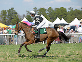 Birthday Beau wins steeplechase at Ford Conger Field, Aiken, S.C., 3/20/2010 for owner-trainer Michele Sanger, and jockey Darren Nagle.