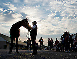 MAY 3, 2015: American Pharoah, with Assistant Trainer Jimmy Barnes,  gets to greet fans and media the morning after winning the 141st running of the Kentucky Derby at Churchill Downs in Louisville, Kentucky. Scott Serio/ESW/CSM