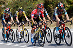The peloton including Race leader Primoz Roglic (SLO) Jumbo-Visma during Stage 19 of La Vuelta d'Espana 2021, running 191.2km from Tapia de Casariego to Monforte de Lemos, Spain. 3rd September 2021.    <br /> Picture: Luis Angel Gomez/Photogomezsport   Cyclefile<br /> <br /> All photos usage must carry mandatory copyright credit (© Cyclefile   Luis Angel Gomez/Photogomezsport)