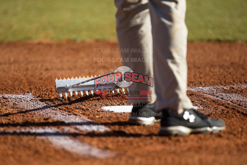 A member of the grounds crew rakes the area in front of home plate prior to the Conference USA baseball game between the Rice Owls and the Charlotte 49ers at Hayes Stadium on March 6, 2015 in Charlotte, North Carolina.  The Owls defeated the 49ers 4-2.  (Brian Westerholt/Four Seam Images)