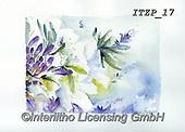 Franco, FLOWERS, BLUMEN, FLORES, paintings+++++,ITZP17,#f#, EVERYDAY