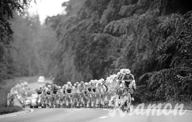 Iljo Keisse (BEL/OmegaPharma-Quickstep) leading the peloton through the forest chasing the breakaway group<br /> <br /> Ster ZLM Tour 2014