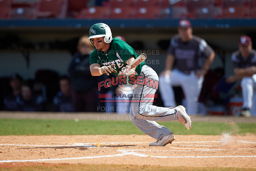 Farmingdale Rams center fielder Nick Attardi (13) lays down a bunt during a game against the Union Dutchmen on February 21, 2016 at Chain of Lakes Stadium in Winter Haven, Florida.  Farmingdale defeated Union 17-5.  (Mike Janes/Four Seam Images)