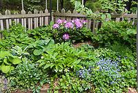 Rhododendron, Myosotis, Hosta, Helleborus, Viola, picket fence in spring flowers