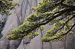 Huang Shan landscape, China