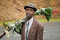 Rwanda. Western province. Village of Utarare Wa Ndaba. Hutu man carries on his right shoulder a banana tree with flowers. Concrete road. © 2007 Didier Ruef