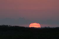 Sun Sets, Merritt Island National Wildlife Refuge, Titusville, Florida, US