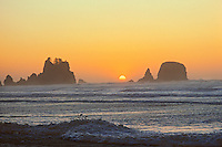 Sunset, Point of Arches, Olympic National Park, wilderness beach, Washington.