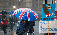Heavy rain during BREXIT scenes in Westminster Houses of Parliament and surrounding area, London, England on 16 January 2019. Photo by Andy Rowland.