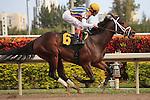 Spring Hill Farm with jockey John Velazquez up, winning at Gulfstream Park, Hallandale Beach Florida.
