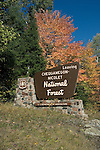 Chequamegon National Forest sign.  Fall.  Wisconsin.