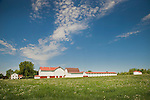 Barns and farm, Holmes County, Ohio.