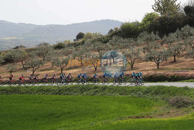 The peloton led by Astana-Premier Tech and Movistar Team in action during the Gran Premio Miguel Indurain 2021, running 203.2km from Estella to Lizarra, Spain. 3rd April 2021.  <br /> Picture: Luis Angel Gomez/Photogomezsport | Cyclefile<br /> <br /> All photos usage must carry mandatory copyright credit (© Cyclefile | Luis Angel Gomez/Photogomezsport)