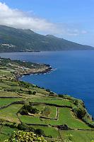 Ponta da Queimada auf der Insel Pico, Azoren, Portugal