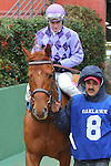 February 22, 2015: #8 The Truth or Else with jockey Calvin Borel aboard coming from the paddock area at Oaklawn Park in Hot Springs, AR. Justin Manning/ESW/CSM