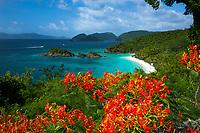 Trunk Bay, St John Virgin Islands National Park