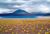 Lac Miscanti, Chili