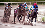 HALLANDALE BEACH, FL - December 09: Master Supreme, #4, and jockey John Velazquez come around the turn clean in The Caribbean Speed Cup at Gulfstream Park on December 9, 2017 in Hallandale Beach, FL. (Photo by Bob Aaron/Eclipse Sportswire/Getty Images.)