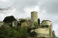 Chateau de Chinon castle. loire, France.