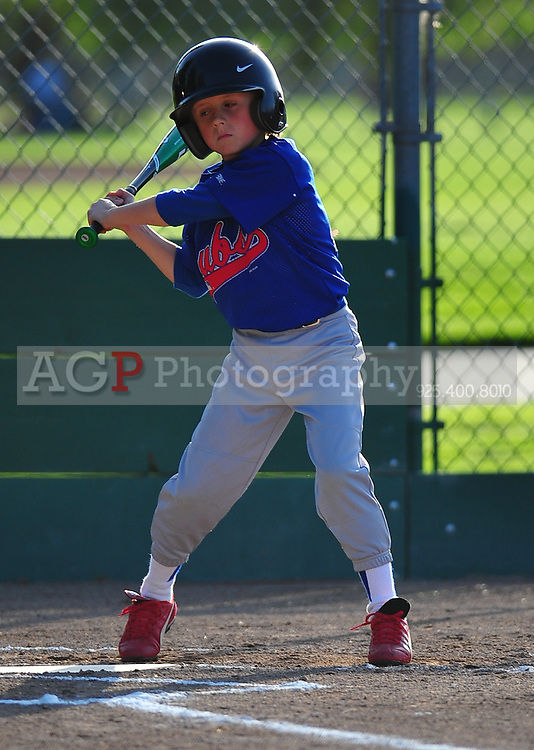 The PNLL AA Cubs at the Pleasanton Sports Park April 14, 2010. (Photo by Alan Greth)