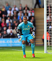 Pictured: Michel Vorm.<br /> Saturday 04 May 2013<br /> Re: Barclay's Premier League, Swansea City FC v Manchester City at the Liberty Stadium, south Wales.