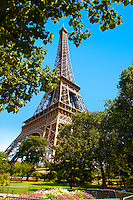 Paris - France -Eifel Tower - Through trees