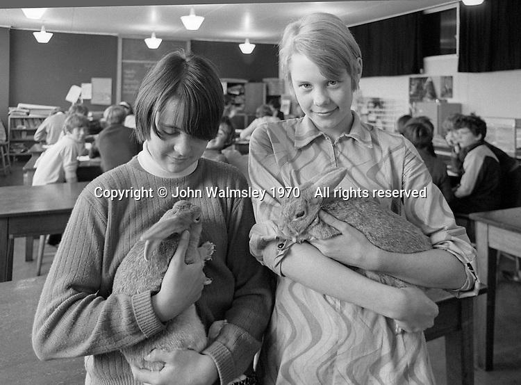 The school rabbits, Whitworth Comprehensive School, Whitworth, Lancashire.  1970.