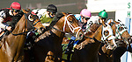20 March 2010:  The start of the Appleton Stakes at Gulfstream Park in Hallandale Beach, FL.