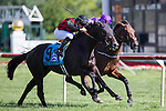 ARLINGTON HEIGHTS,IL-AUGUST 13: Beach Patrol,ridden by Florent Geroux,wins the Secretariat Stakes at Arlington International Race Track on August 13,2016 in Arlington Heights,Illinois (Photo by Kaz Ishida/Eclipse Sportswire/Getty Images)