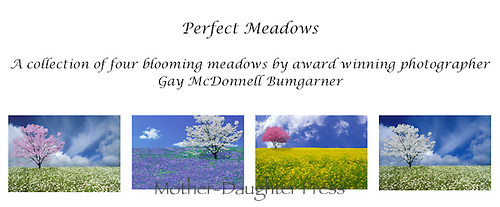Perfect meadows card set