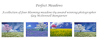 Perfect meadows card set
