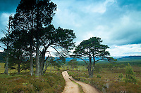 Gleann Einich, Cairngorm National Park, Badenoch and Speyside