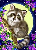 Kayomi, CUTE ANIMALS, LUSTIGE TIERE, ANIMALITOS DIVERTIDOS, paintings+++++,USKH305,#ac#, EVERYDAY ,#A#,realistic ,raccoon